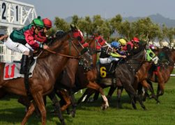 How to bet on horse racing? 10 tips to get started